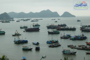 Hai Phong promotes Cat Ba Island tourism