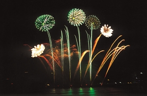 Da Nang International Fireworks Competition to be held annually
