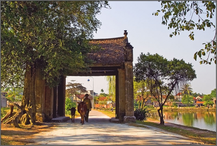 Duong Lam ancient village in autumn
