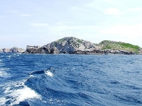 Swallow Island in Binh Dinh